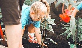 Barn som planter i jord