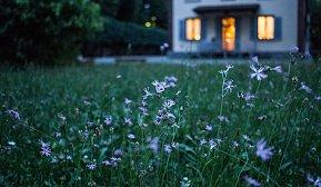 Blomstereng foran enebolig i landlig strøk